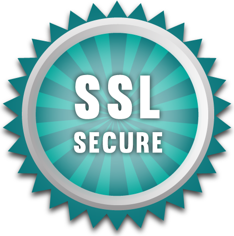 SSL Online Security